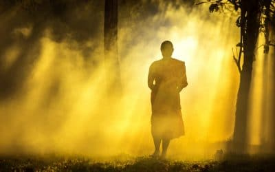 What We Can Learn About the Quality of Life, Death & Beyond from Theravada & Mahayana Buddhism & Meditation Practice