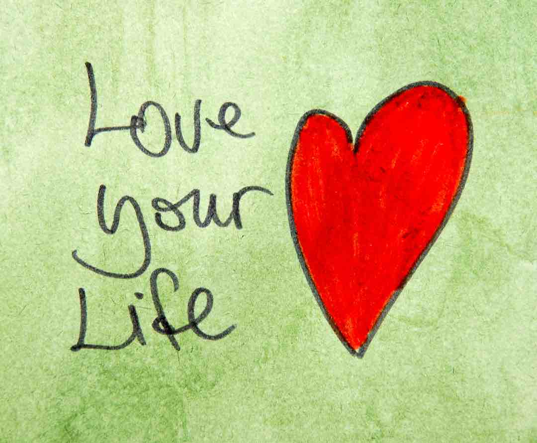 Love Life and Beyond reflections